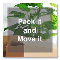 Pack it and Move it